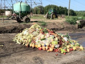 food waste page 3